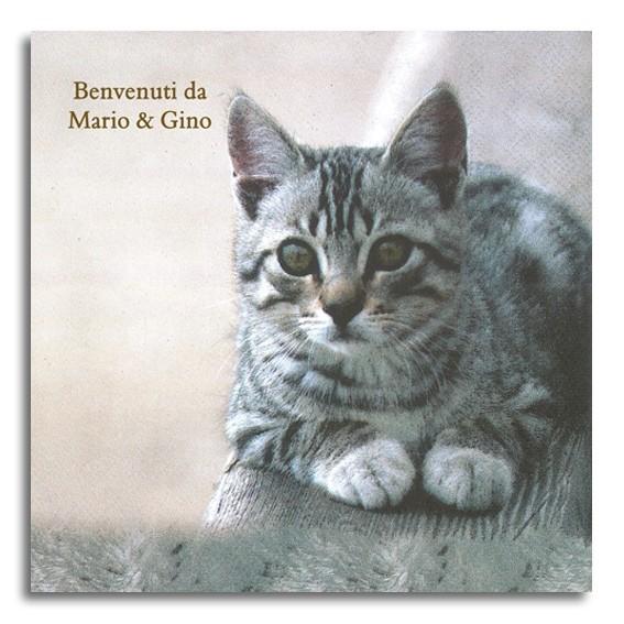 graue Katze Serviette, ohne Druck